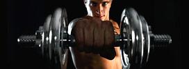 Programmes de musculation
