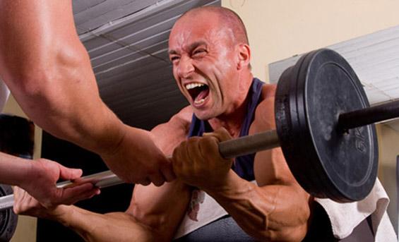 Curl pupitre biceps