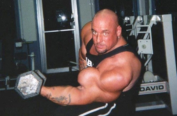 Synthol musculation