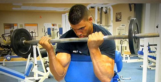 quel exercice pour se muscler les biceps