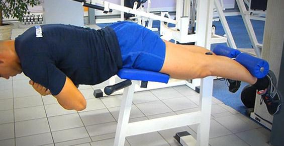 extension de buste musculation